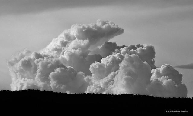 Cumulonimbus beyond the ridge