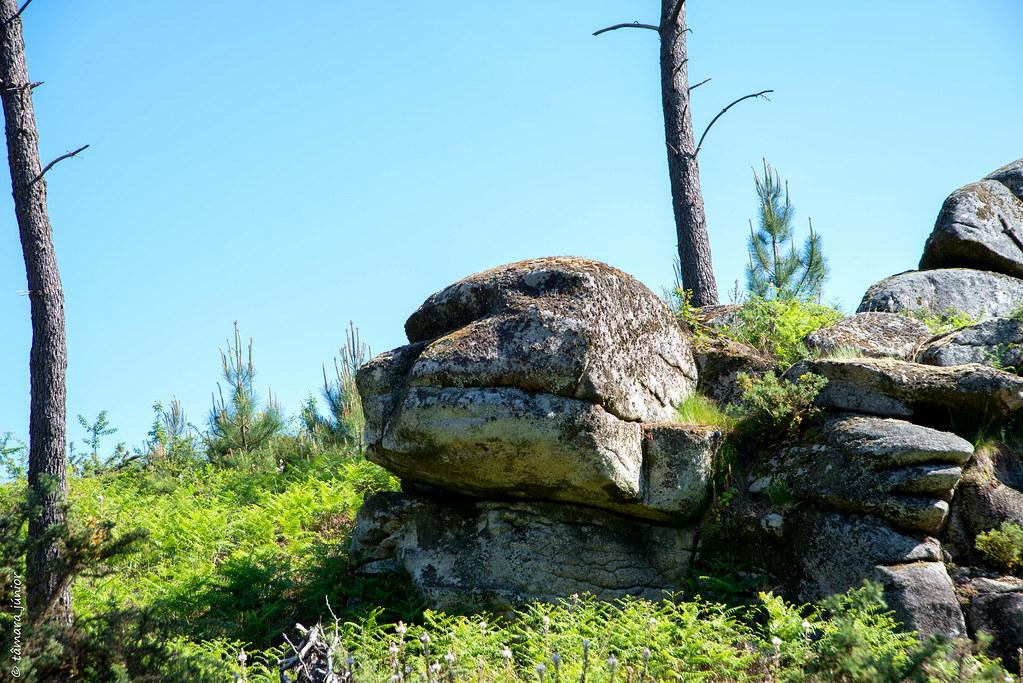 18.- Rota do Monte Aloia (151)