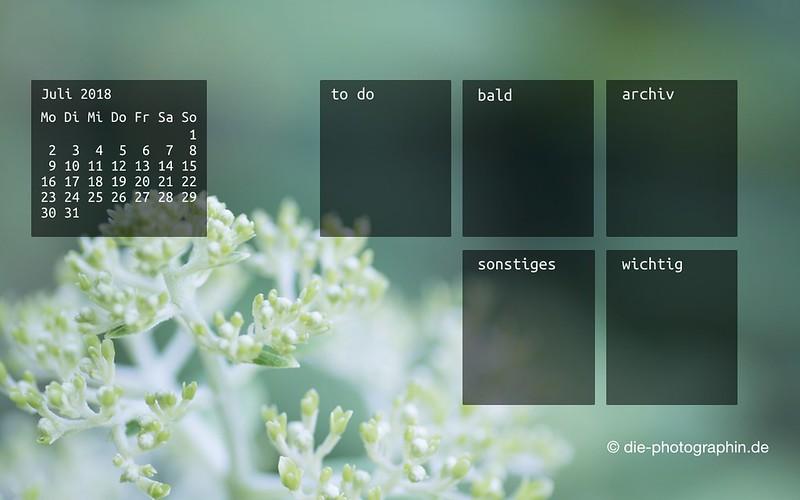 072018-garten-makro-hell-organizedDesktop-wallpaperliebe-diephotographin