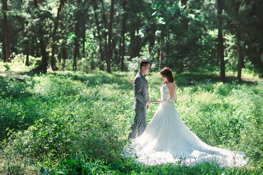 41557103420 e06ddf613a o 台南婚紗景點推薦 森林系仙女的外拍景點