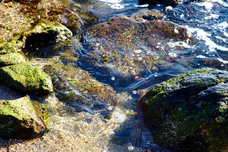 Water on rocks, Glass Beach, Hanapepe