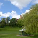 Miller Park scene