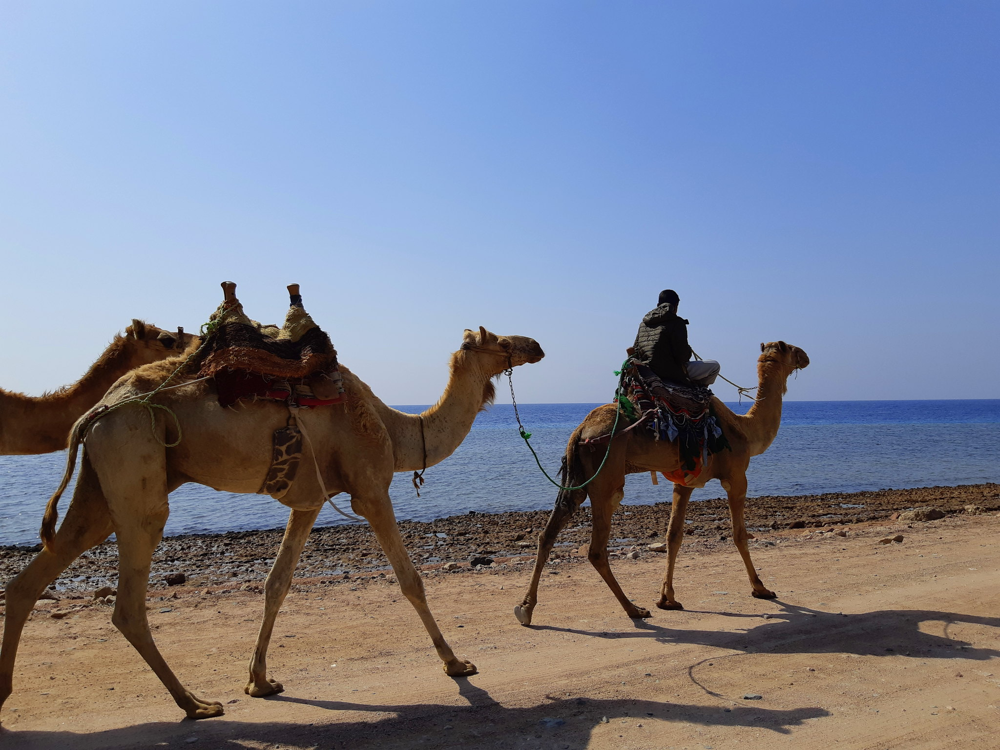 Dahab is by the Red Sea