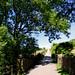 Barley, bridle path to Aitken Wood