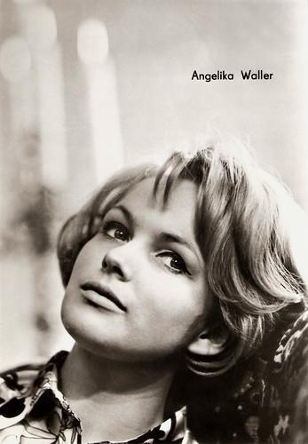 Angelika Waller