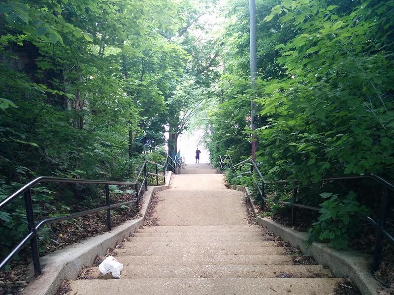 Down the stairs #toronto #stairs #escarpment #glaciallakeiroquois #davenport #regalheights #davenportroad #regalroad