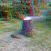 Red squirrel at morton lochs (3d view with red/blue glasses)