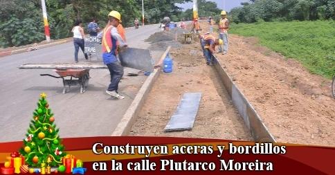 Construyen aceras y bordillos en la calle Plutarco Moreira
