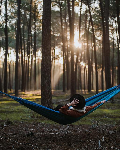 Hammock in the Pines, Nikon D610, AF Zoom-Nikkor 80-200mm f/2.8 ED