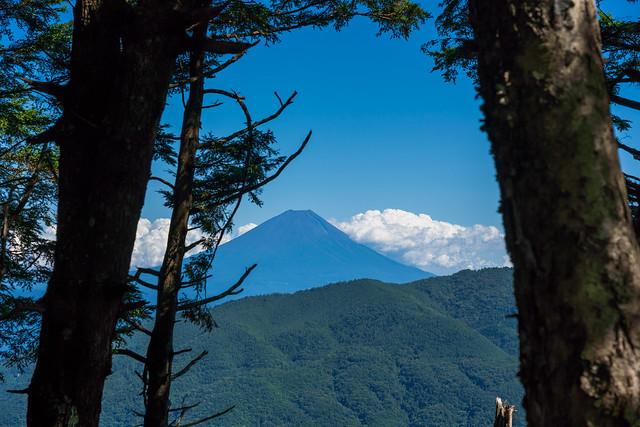 木々間から富士山
