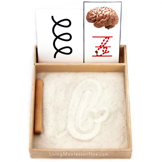 B Is for Brain Sand Writing Tray with Left and Right Brain Writing Cards