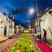 La Noche que Nadie Duerme - Tapetes de Aserrín - Huamantla - Tlaxcala - México por Luis Enrique Gómez Sánchez