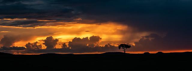 Masai Mara Sunset, Panasonic DMC-GX80, LEICA DG 12-60/F2.8-4.0