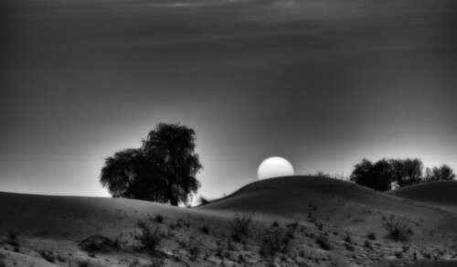чб bw закат рассвет восход sunrise sunset пустыня desert солнце sun dmilokt black white