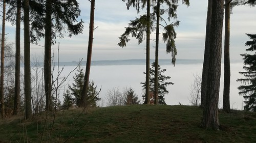 Hohenwarte Stausee Wanderweg