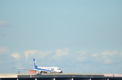 ANA B787 JA821A Taxiing in Haneda Airport