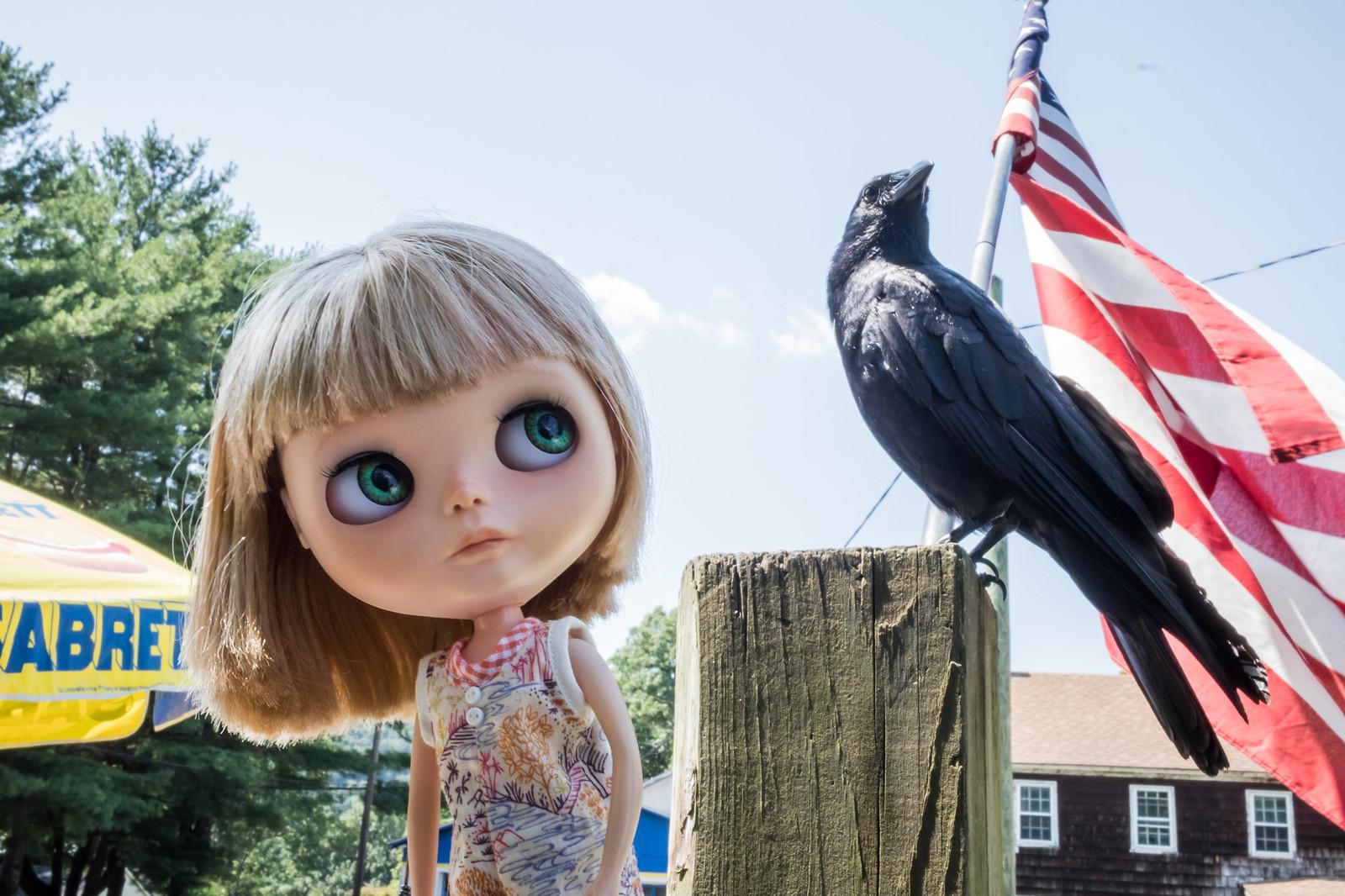 Holy Crow!!