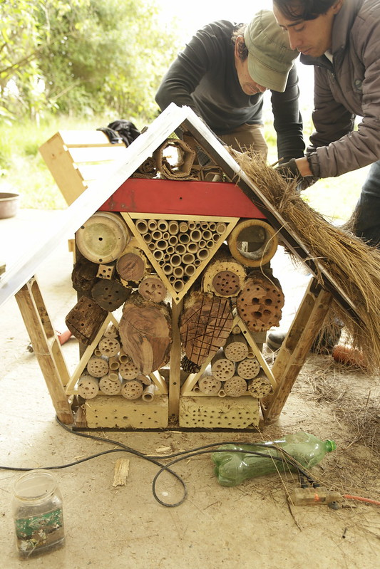 Construcción domo geodésico y hotel de insectos