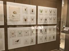 岩手県立博物館と盛岡