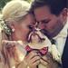 Dogs Wedding Lovers by Perolo Orero - www.orerofotografia.com -