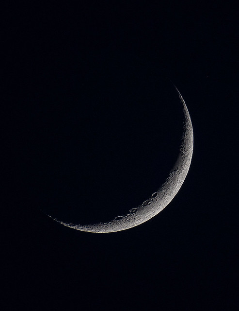 young moon-1