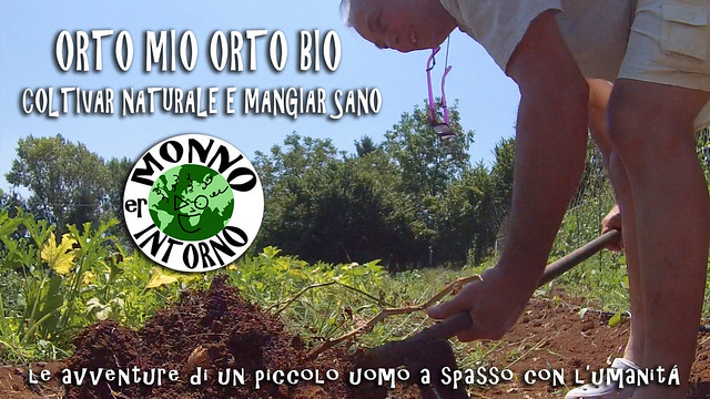 Orto mio orto bio / My organic vegetable garden