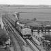 Reedham Swing Bridge 37407+37419 2J67 0747 Lowestoft-Norwich 140818