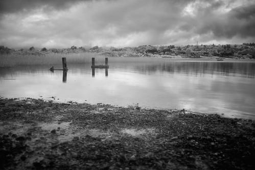 Lough Gill