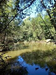 Les Bois Francs