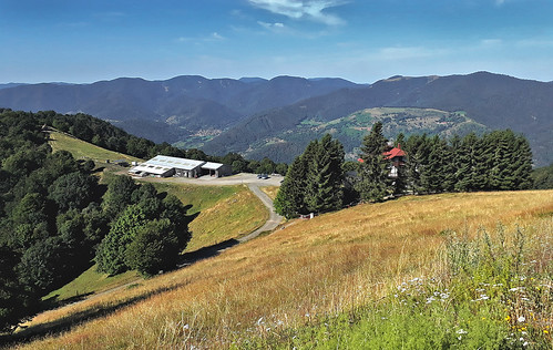 C'est beau les Vosges à  VTT