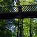 Dingle Bank footbridge, 2018 Jul 08 -- photo 2
