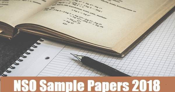 nso sample papers