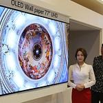 LG디스플레이, 상반기 대형 OLED 패널 판매 급증