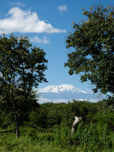 kilimandjaro arusha nature tanzania kilimanjaro arusharegion tanzanie tz