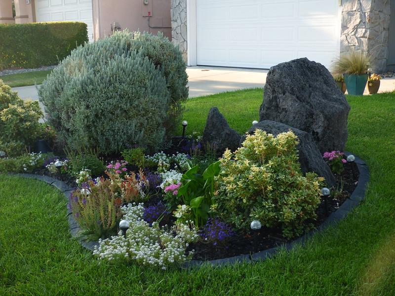 2018-08-15 - Neighborhood Flowerbeds