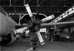 Historic Aircraft Restoration Project, Floyd Bennett Field, Brooklyn, NY