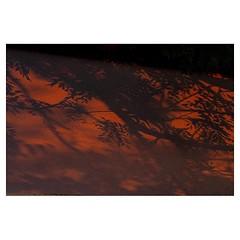 "Last 5"" of sun, Lucerne 2018 . #xpro2 #fujixpro2 #fujifeed #fujifilm #fujilove #myfujilove #fujifilm_xseries #fujifilmusa #fujifilmnordic #fujifilmme #fujifilm_uk #twitter #geoffroyschied #35mmofmusic #vierwaldstättersee #luzern @lucernefestival #sun #sun"