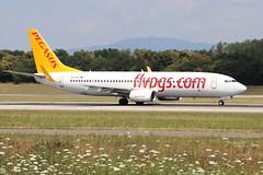Boeing 737 -86J PEGASUS AIRLINES TC-CPV 36884 Mulhouse juillet 2018