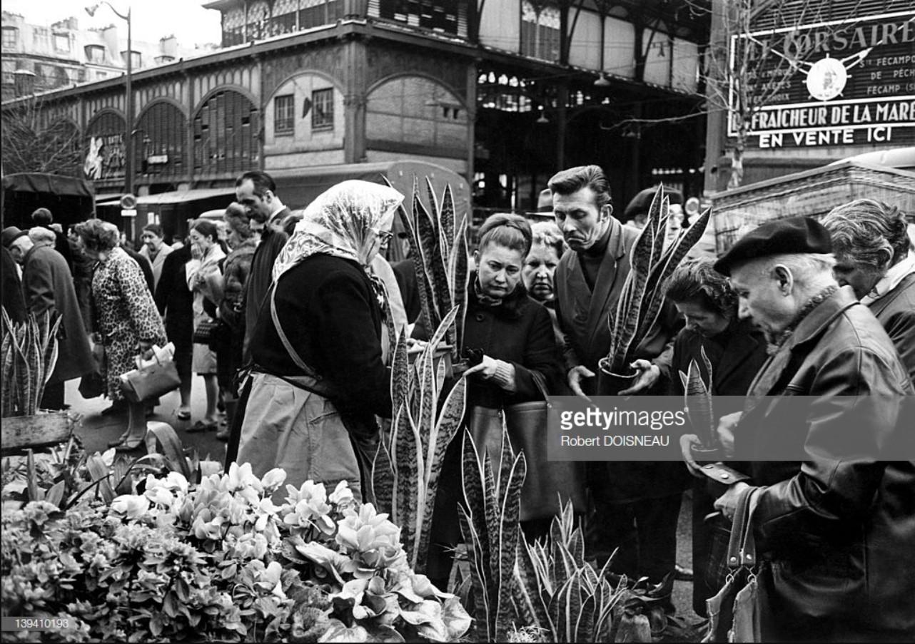 1969. Торговка комнатными растениями на улице в Ле-Аль