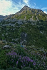 Getting out of the shelter in the morning - Refuge des Besines