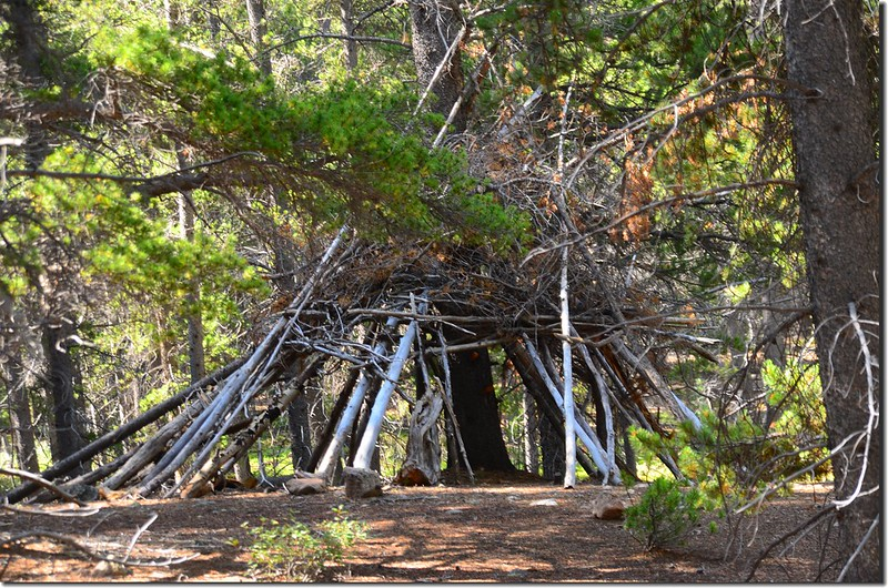 Amazing shelters along the trail