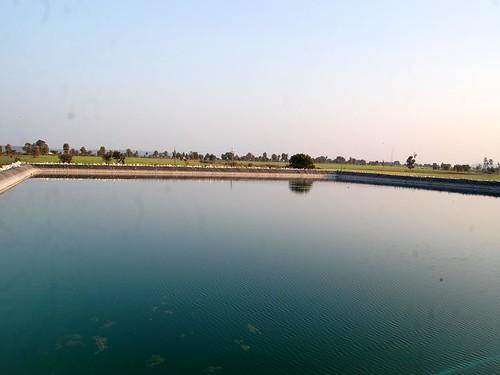 पानी से लबालब भरा प्रहलाद का तालाब