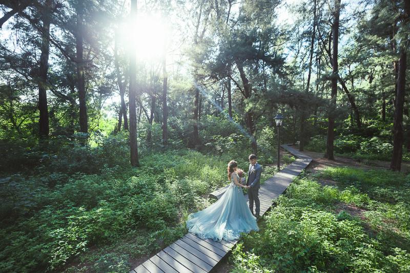 43900289361 8fe13bb9d0 o 台南婚紗景點推薦 森林系仙女的外拍景點