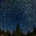Starry Moonlit Night by victorvonsalza