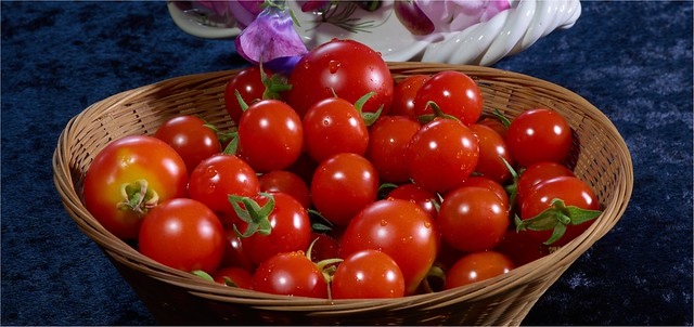 Our latest crop. Just taken from the Tomato Plant