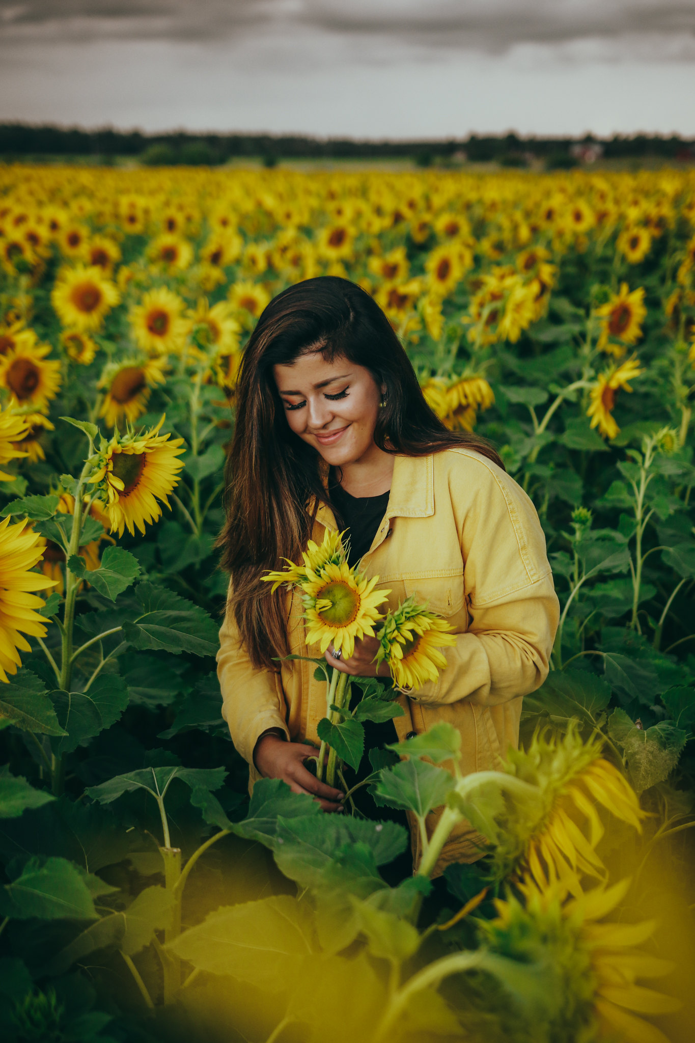auringonkukkia-19