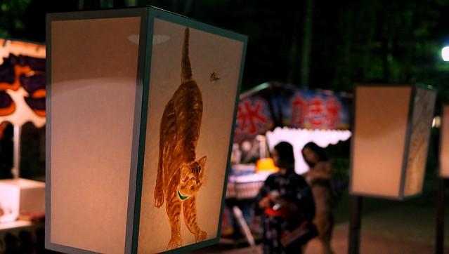 鎌倉ぼんぼり祭り'18-12