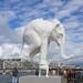 Au Havre, l'éléphant créé par Fabien Mérelle est arrivé à bon port by Rolye