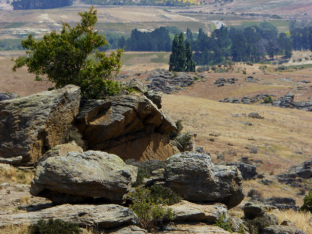 The Central Otago Region has distinctive rocky outcropping, rugged landscapes and sparse vegetation