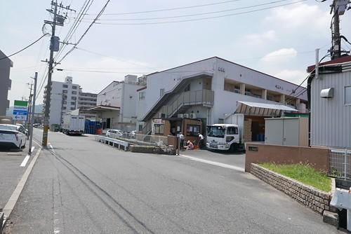 shinkouokashi002